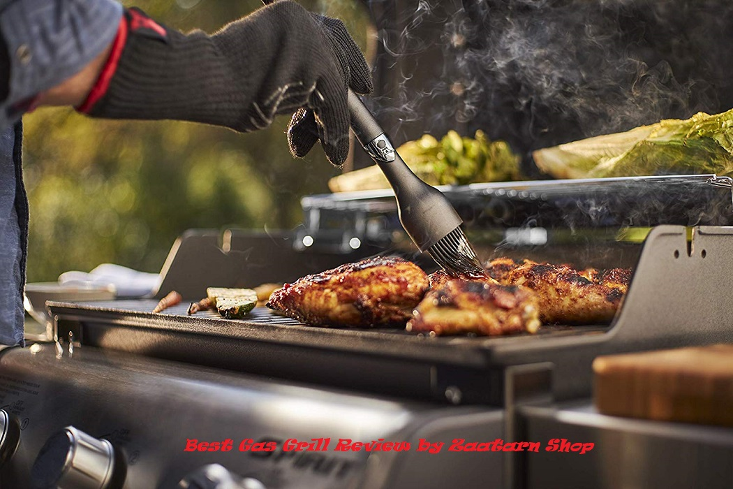 Best Gas Grill Reviews in 2020