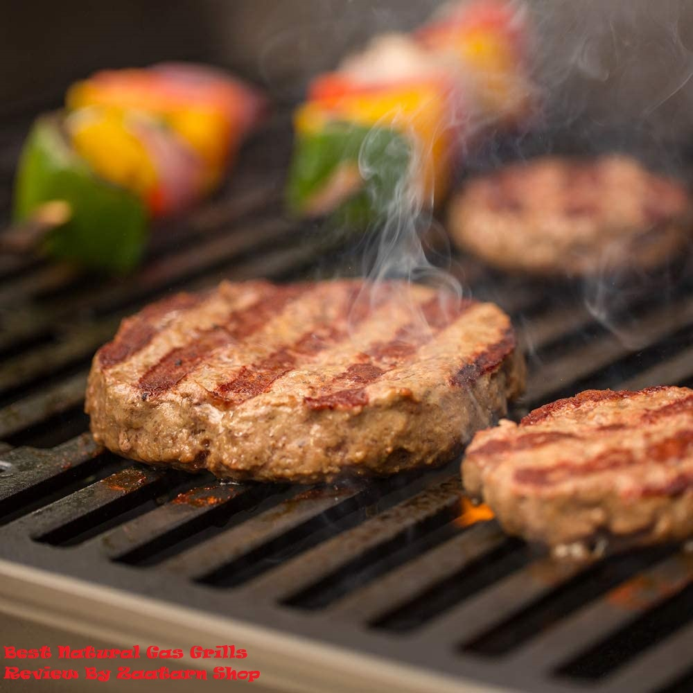 Best Natural Gas Grills Reviews By Zaatarn Shop
