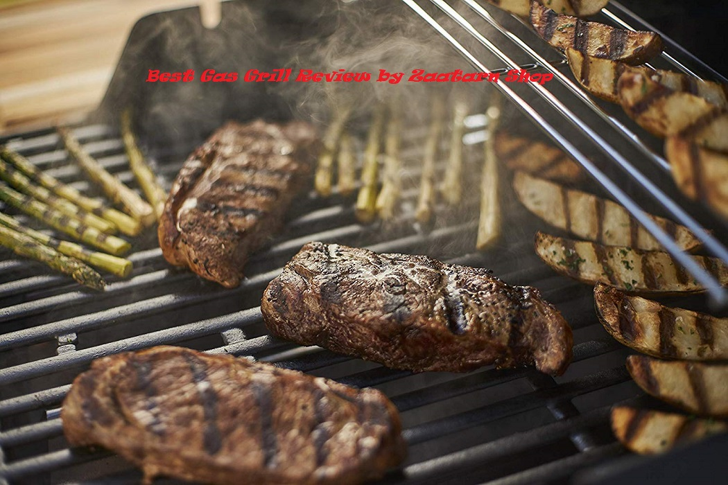 Best Gas Grill Review by Zaatarn Shop