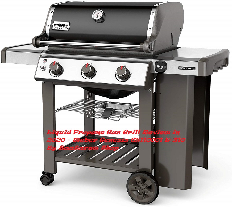 Liquid Propane Gas Grill Review in 2020 – Weber Genesis 65110001 E-310