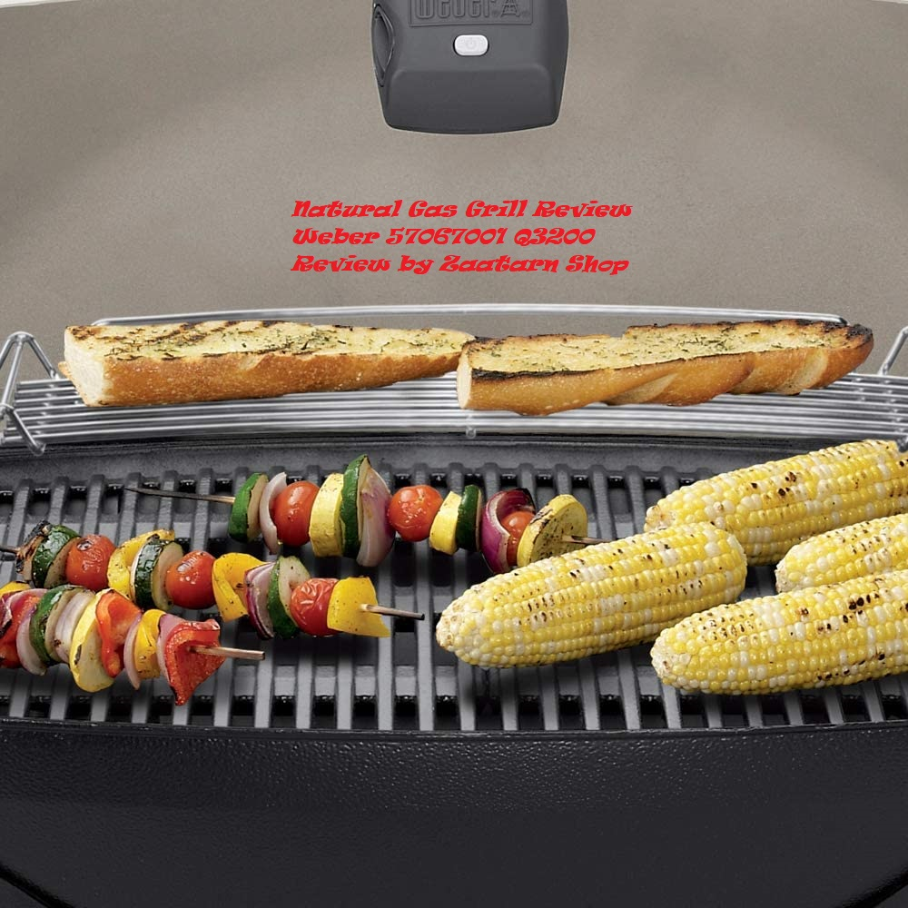 Natural Gas Grill Review Weber 57067001 Q3200 Review by Zaatarn Shop