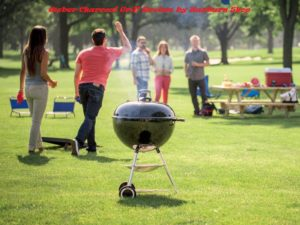 BEST WEBER GRILL REVIEWS IN 2020